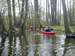 Spływ Kajakowy - Pensjonat Roma