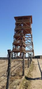 Wieża Świechocin - Pensjonat Roma